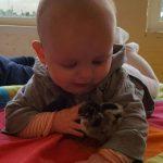 Babies - Hamertje-Tik Kinderdagverblijf, Kinderopvang en buitenschoolse opvang in Beijum, Groningen.